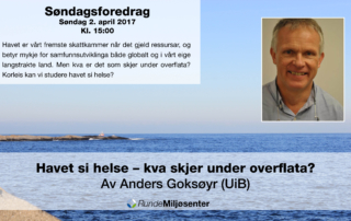 facedbookbanner-for-anders-goksoyr